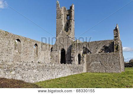 Kilmallock dominican Priory