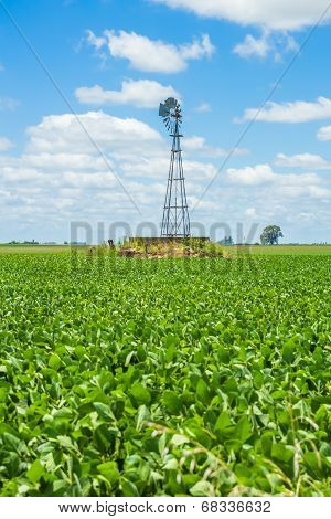 Windmill On A Field