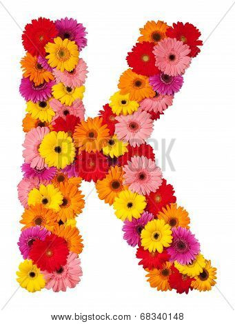 Letter K - Flower Alphabet Isolated On White