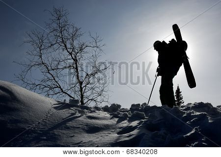 Silhouette Of Backcountry Skier