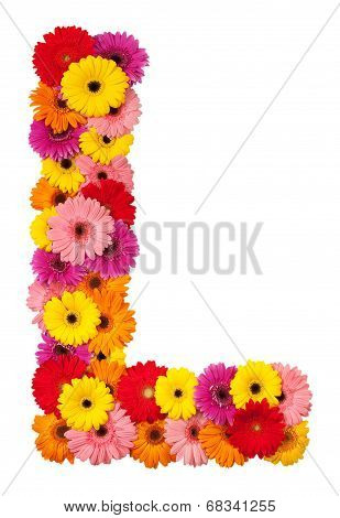 Letter L - Flower Alphabet Isolated On White