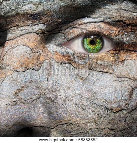 Conceptual Image Of A Face With A Bark Skin