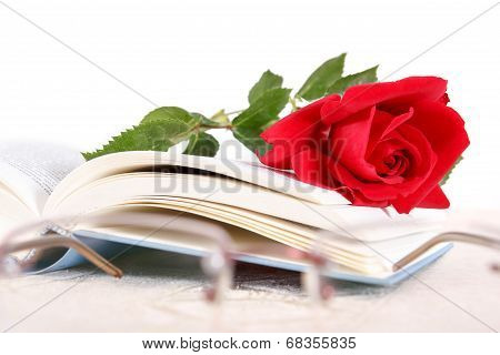 Book And Red Rose On Pages Of Book On White Background With Glasses In Front
