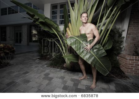 Naked man covered by a leaf