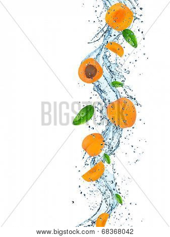 Fresh apricot with water splash over white background