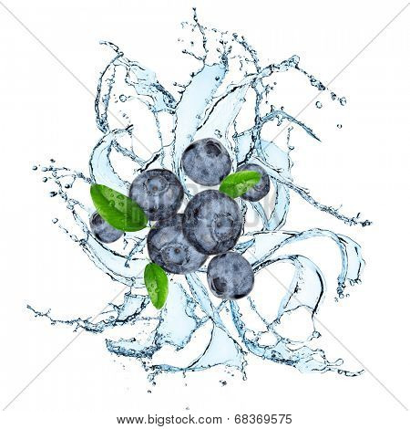 Fresh blueberries with water splash over white background