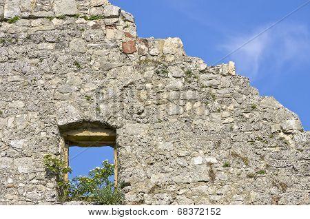 Wallflowers In A Window