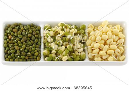 Dried and soaked Mung Bean (Green gram) sprouts with and without green skins.