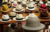 stock photo of panama hat  - Ecuador  - JPG