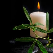 foto of tendril  - Beautiful spa setting of green tendril passionflower candle and zen stones with drops on reflection water closeup - JPG