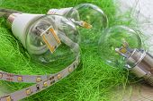 image of strip  - LED strip with various E27 light bulbs on artificial grass - JPG
