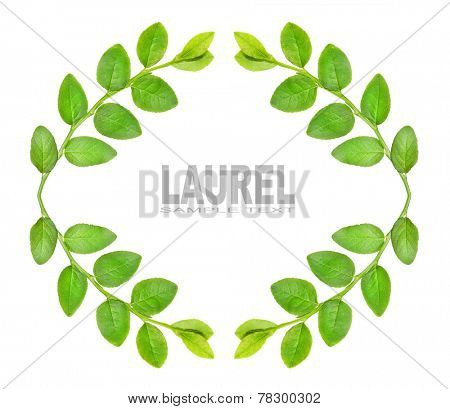 Laurel wreath with space for your text.