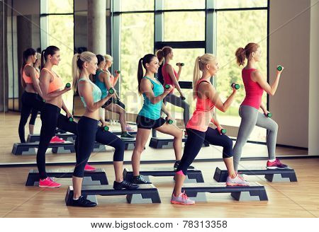 fitness, sport, training, gym and lifestyle concept - group of women working out with dumbbells and steppers in gym
