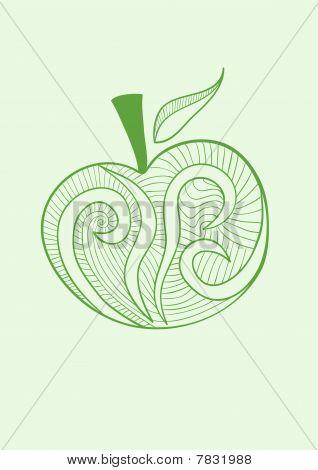 Vector stylized  illustration of apple