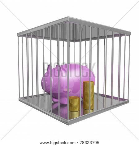 Gold Coins And Piggy Bank In A Cage