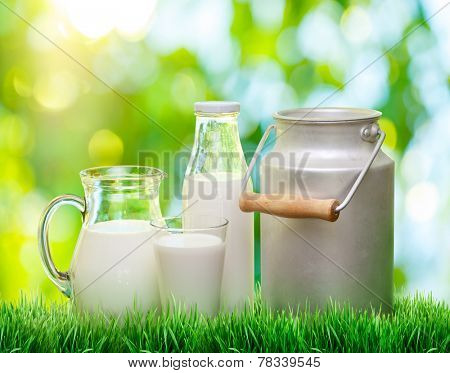 Fresh organic milk. Nature blur background.
