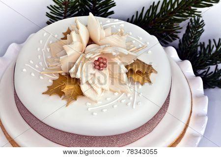 Iced cake.
