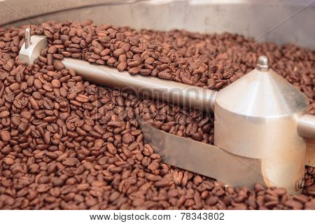 Coffee Beans In A Cooler