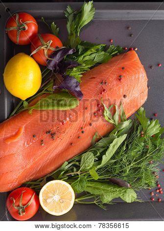 Salmon with seasoning on a pan