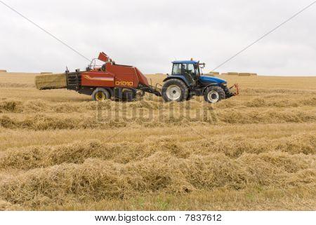 Erntezeit in wiltshire