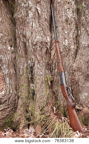 Rifle In Wilderness