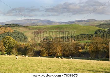 West Loshian, Scotland, November