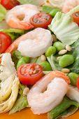 Постер, плакат: Italian Shrimp Salad