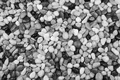 stock photo of bereavement  - Black and white pebble stones for a background - JPG