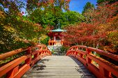 stock photo of taoism  - Daigoji Temple in Autumn Kyoto city Japan - JPG
