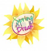 picture of spring break  - Flashcard with a text of spring break - JPG
