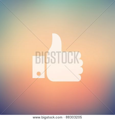 Like symbol icon in flat style for web and mobile, modern minimalistic flat design. Vector white icon on gradient mesh background