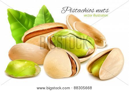 Pistachio nuts with leaves. Vector illustration