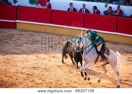 Portuguese Style Bullfighting