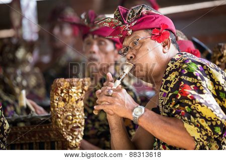 BALI, INDONESIA, DECEMBER, 24,2014: Musicians in the troupe play traditional Balinese music to 'Barong Dance show' in Ubud on December 24, 2014 in Bali, Indonesia