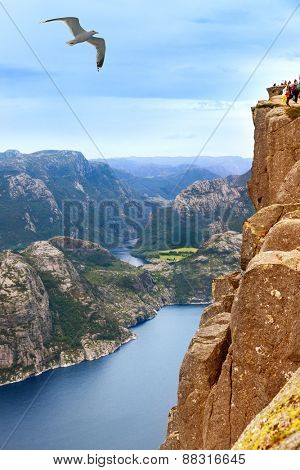 Cliff Preikestolen in fjord Lysefjord - Norway - nature and travel background
