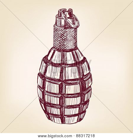 grenade hand drawn vector llustration realistic sketch