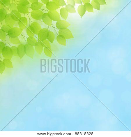 Spring/Summer Vector Background