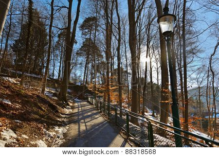 Park in Innsbruck Austria - nature and travel background