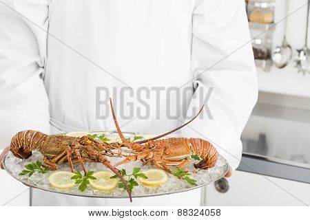 Preparing spiny lobsters