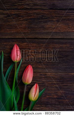 Red Tulips Flowers On Wooden Background. Top View, Copy Space.
