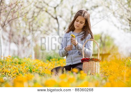 Child outdoors with dandelions. Girl sitting on a meadow, next to her is a baskets