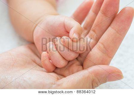 New born baby hand.