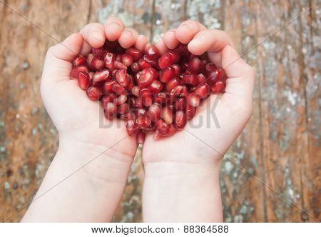 Garnet Grains In The Hands Of