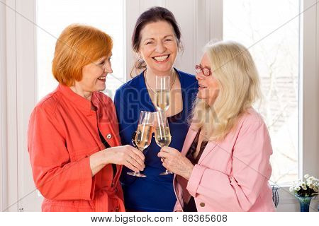Mom Best Friends Enjoying Glasses Of White Wine