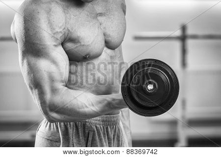 Strength training with dumbbells. Male bodybuilder train in the gym
