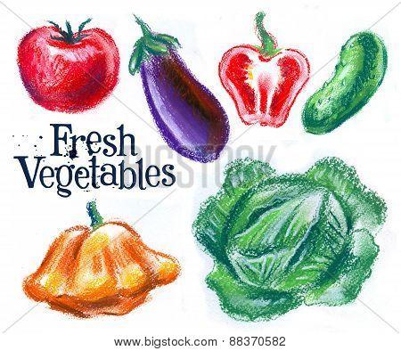 harvest, vegetables on a white background.