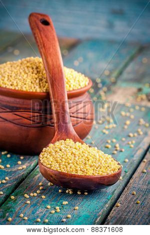 Organic Millet Seeds In A Spoon And A Ceramic Bowl