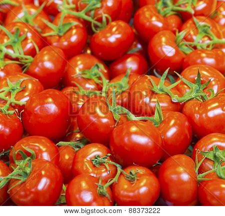real organic tomatoes at market stall