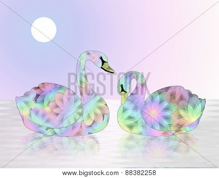 Pair of Pastel,Multicolored Colored Swans on Lake