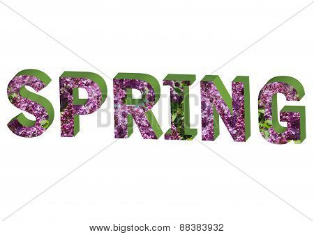 Letter Spring With  Lilac Pattern